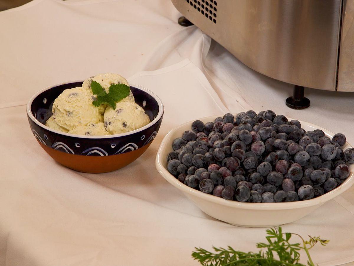 Blueberry Golden 25 Vanilla Ice Cream