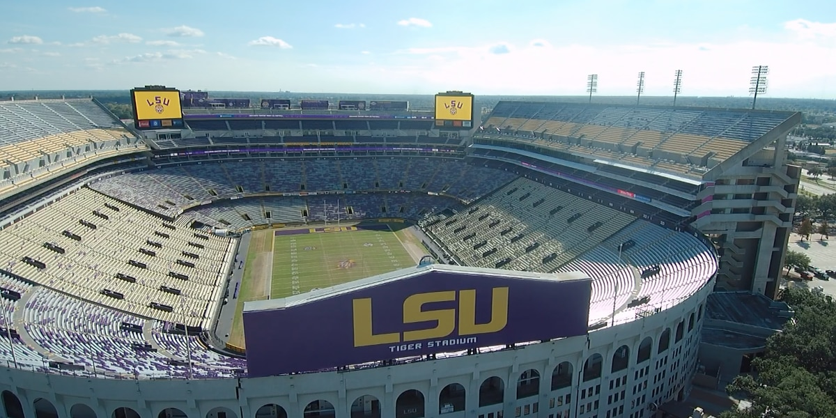 LSU Tiger fans can have their cutout in Tiger Stadium
