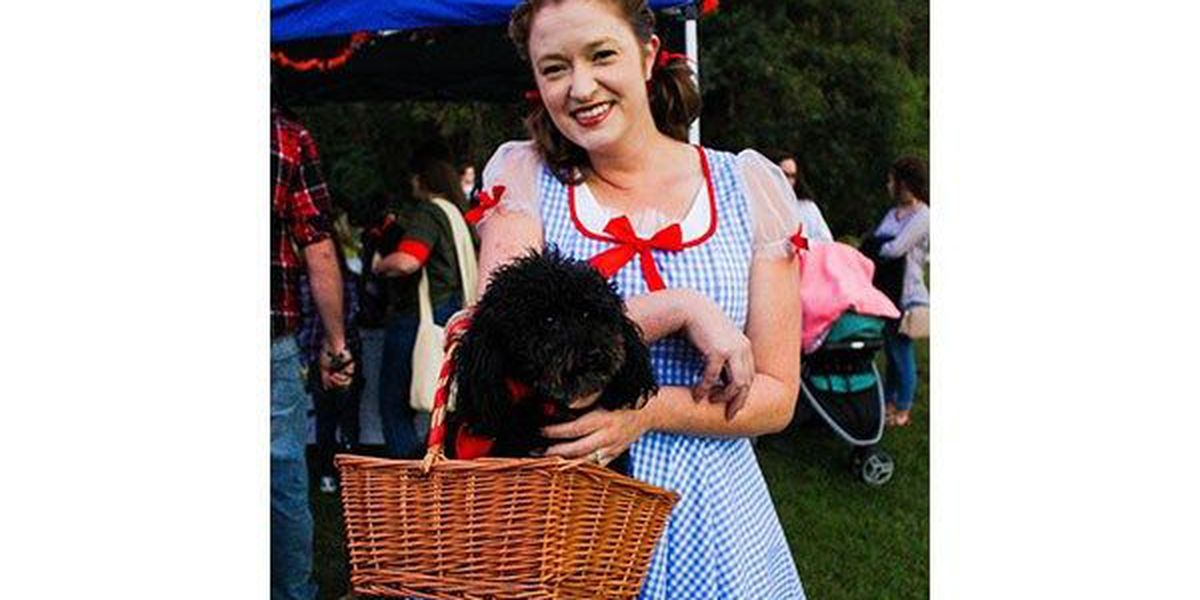 Halloween safety tips for you… and your little dog, too!