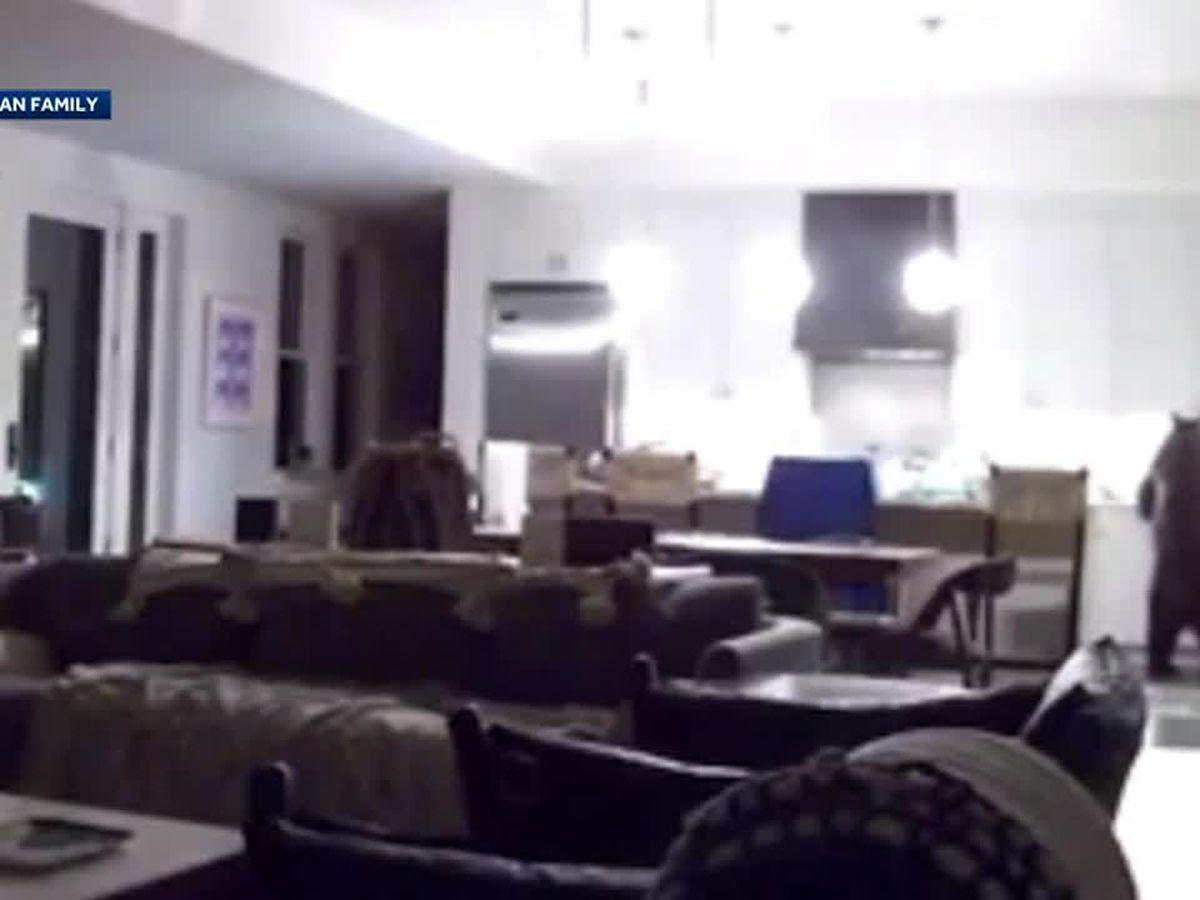 Caught on camera: Bear raids home's refrigerator as teen boys watch in fear