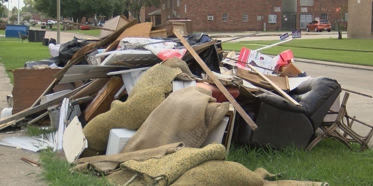 ACTION JACKSON: Gardere neighborhood residents say city-parish neglecting to clean up