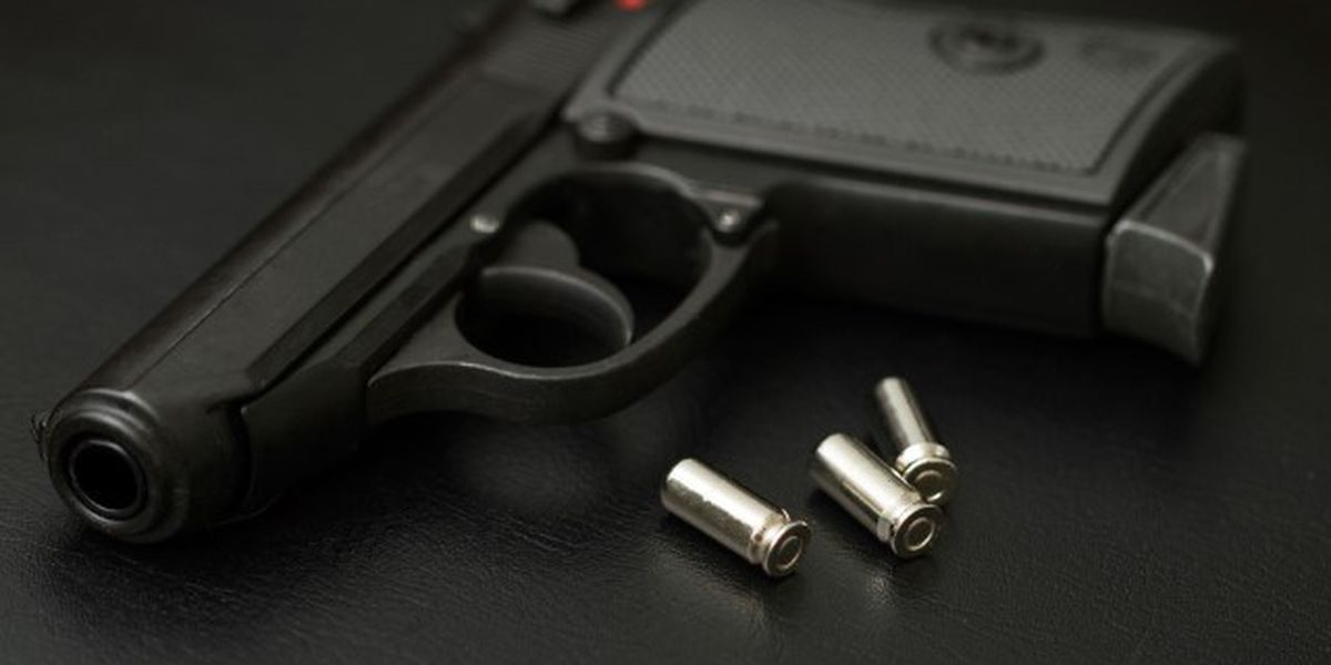 Castle doctrine may be applied in case of Ascension home invasion shooting