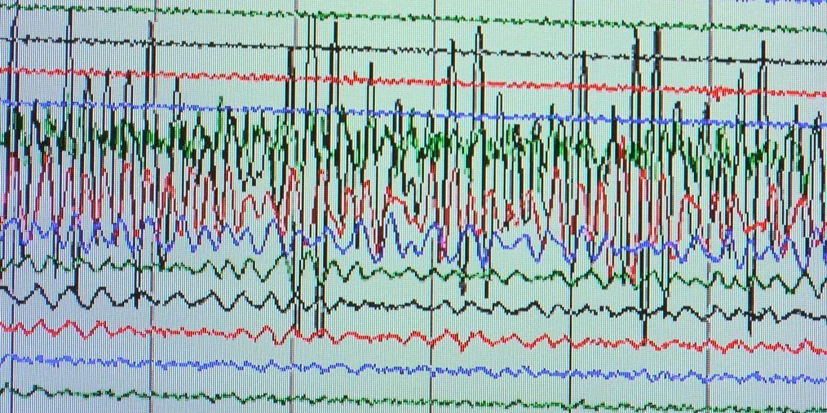 Weak earthquake occurs on Alabama-Florida line; no damage