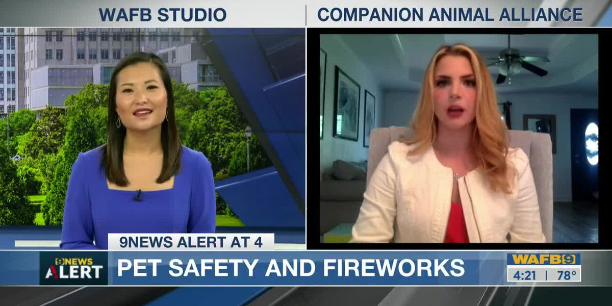 CAA talks about pet safety during 4th of July holiday, volunteer opportunities