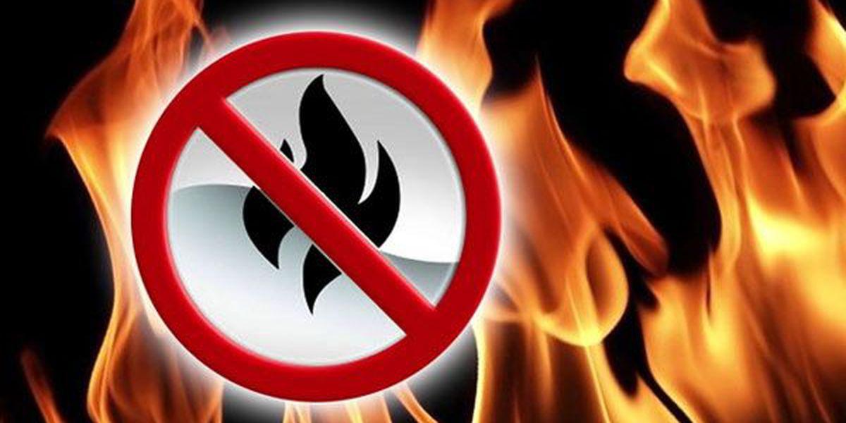 State Fire Marshal declares Livingston Parish under burn ban