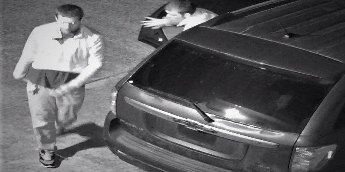 WANTED: Suspects sought in business burglary