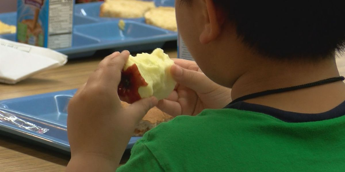 Parents told they could lose kids over unpaid school lunches