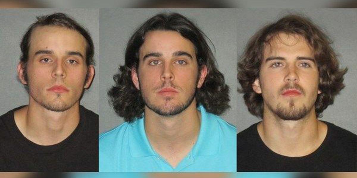 Three Lafayette men break in to Tiger Stadium