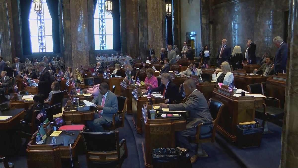 Louisiana legislature expected to look different by the time the next session starts in March