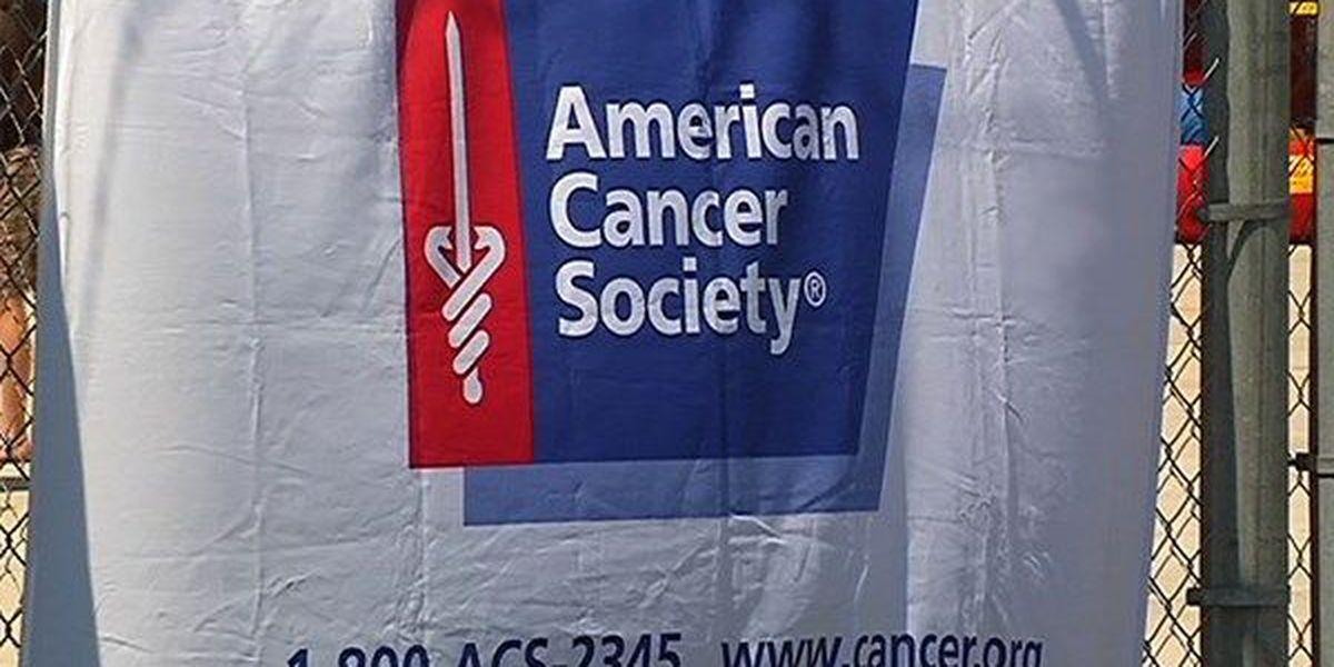 Making Strides Against Breast Cancer walk scheduled for Nov. 13