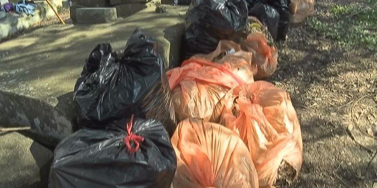 Dozens volunteer to clean up overgrown cemetery