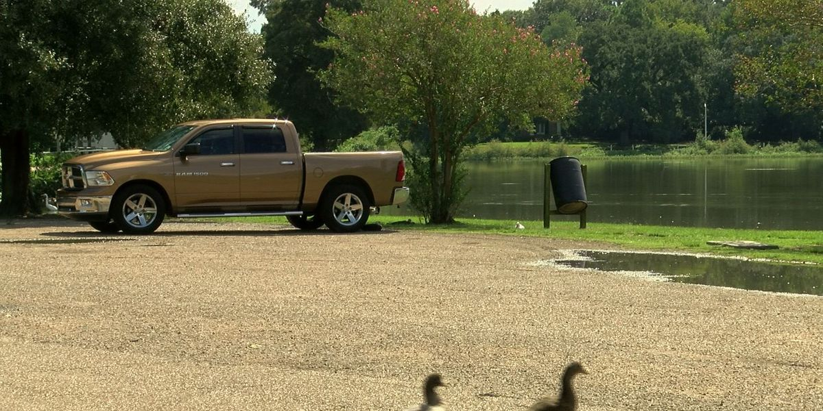 Baton Rouge business owner hopes to win award to revitalize City Park lakes