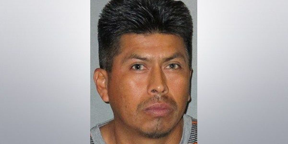 Police arrest man suspected of molesting and raping 9-year-old
