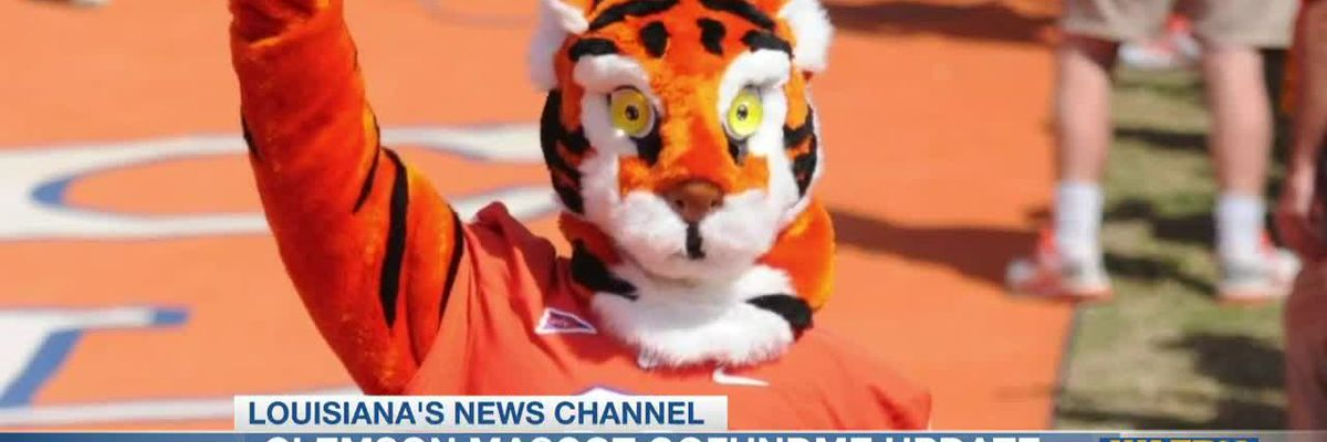 Money raised from GoFundMe to buy Clemson mascot new costume will go towards benefiting tigers in the wild