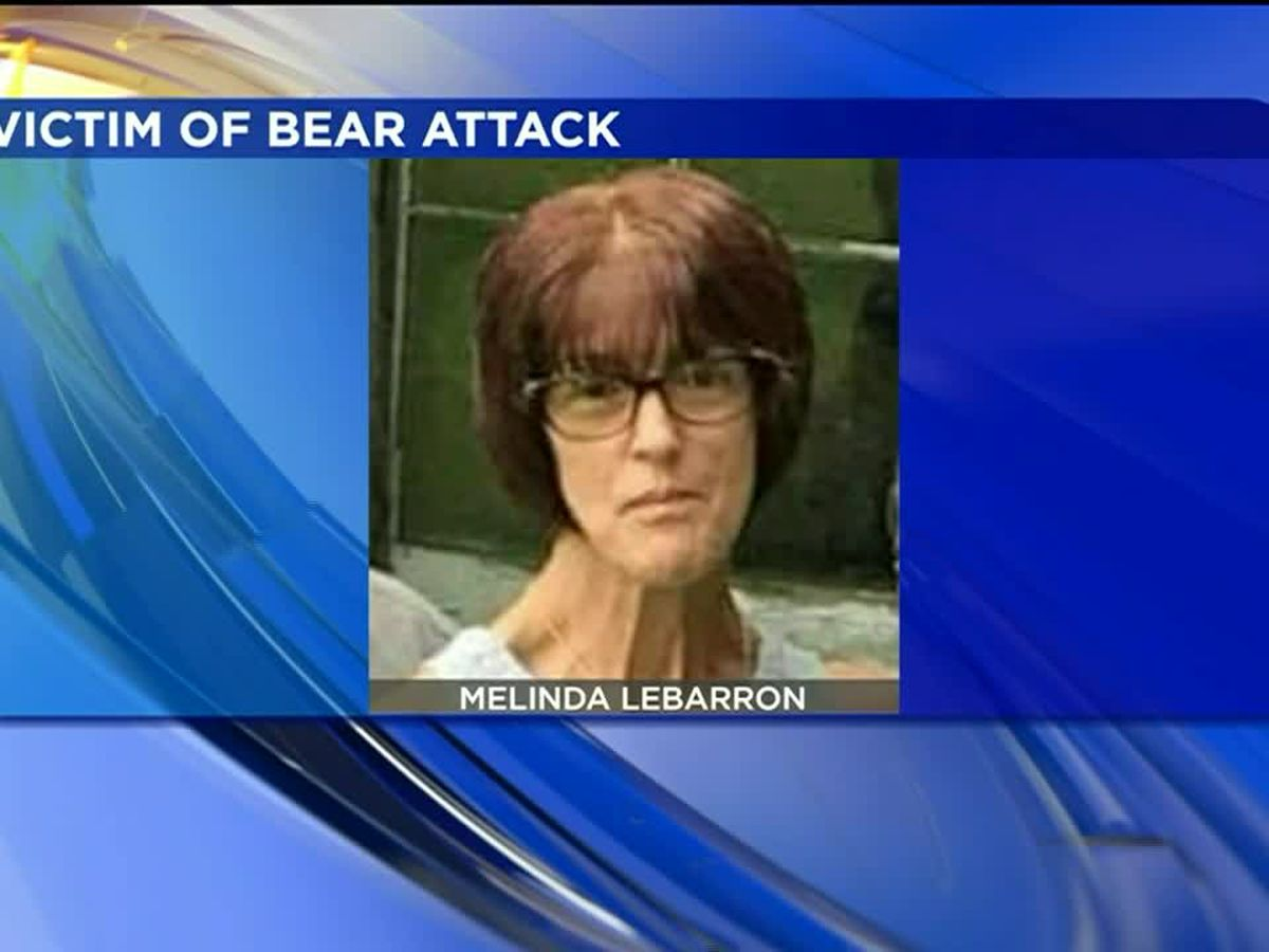 Woman seriously injured in bear attack in PA