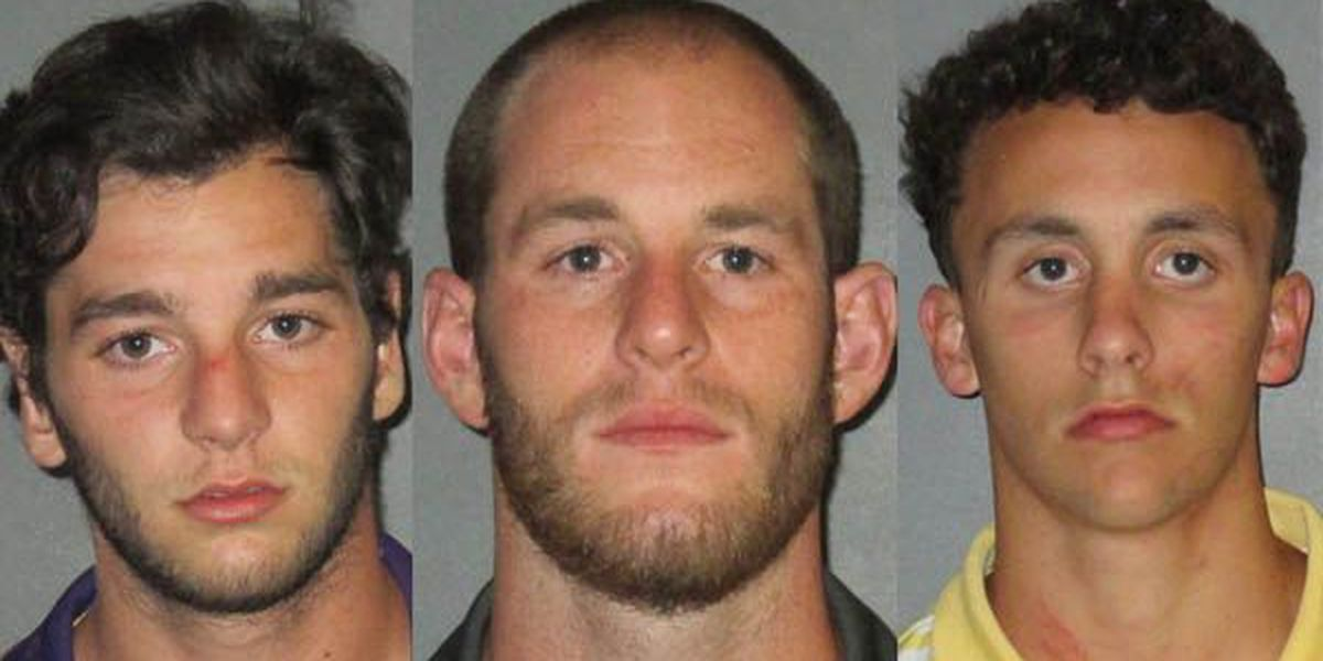 3 arrested for allegedly starting fight during tailgate at LSU football game