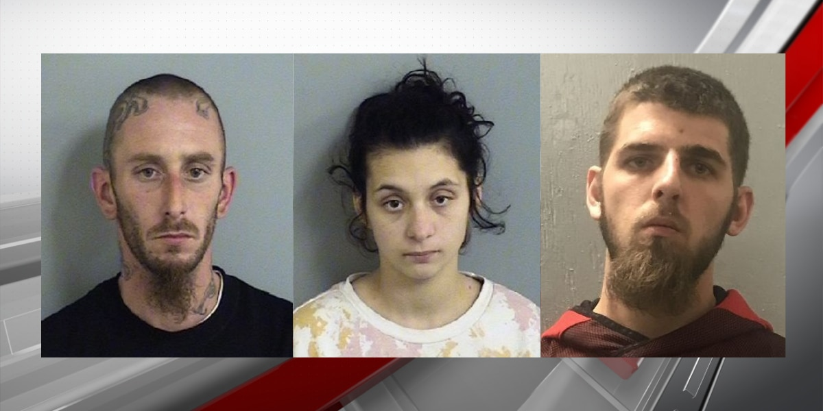 Three face 71 charges in alleged burglary at Dutchtown storage facility, deputies say