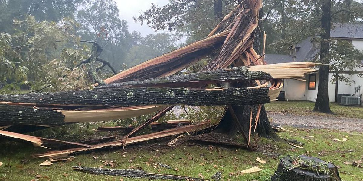 W Feliciana sheriff, sergeant injured by falling trees during Hurricane Delta