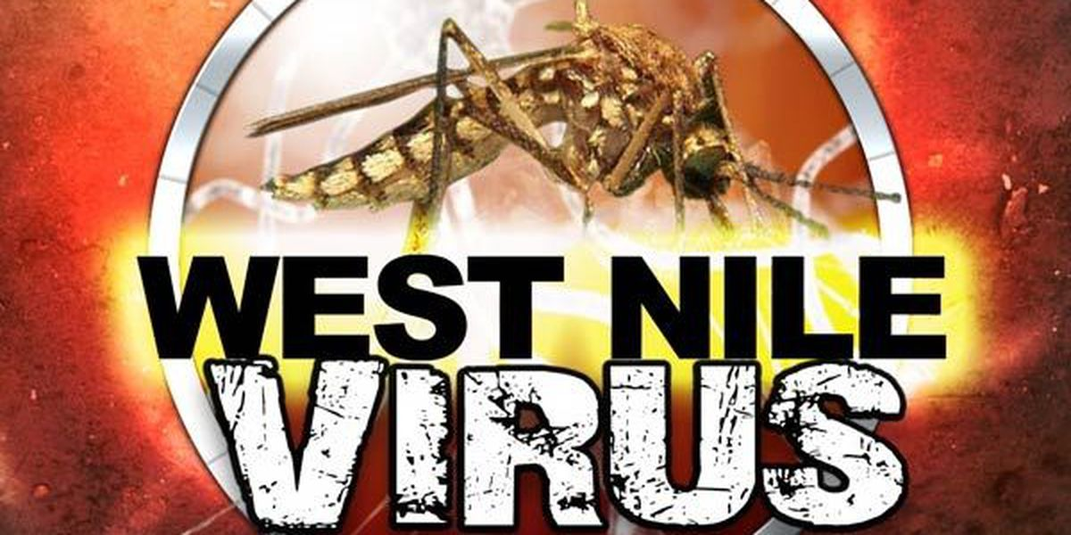 DHH confirms 12 new cases of West Nile