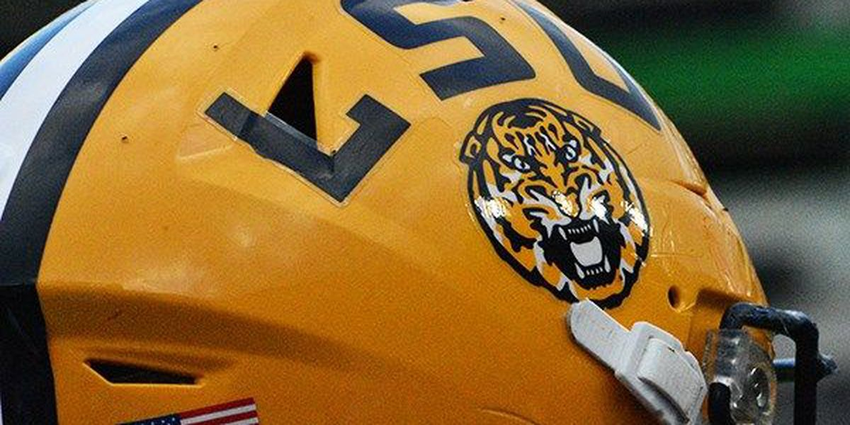 Former LSU tight end signs with Carolina