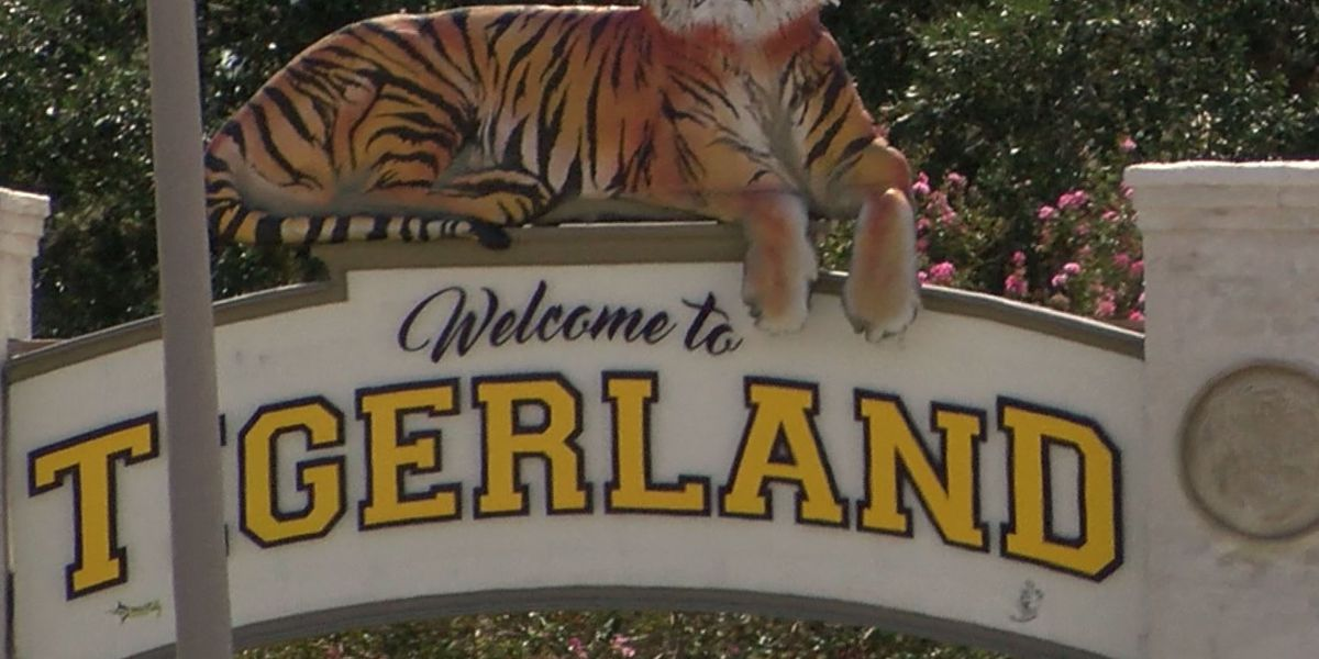 More lighting coming to Tigerland area after LSU sophomore hit by car, killed