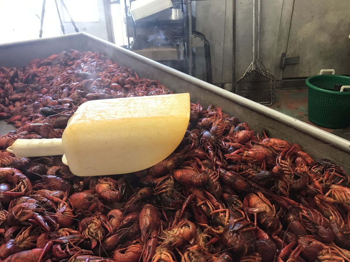 Where's the cheapest crawfish in Baton Rouge?