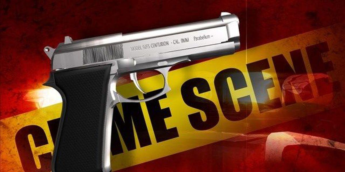 Baton Rouge Police investigate Callahan St. shooting