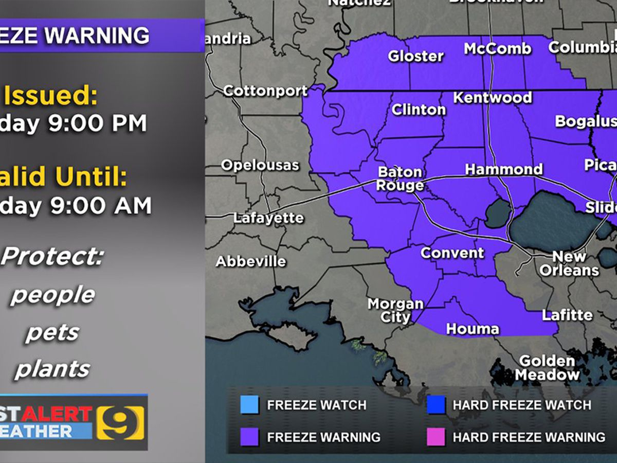 FIRST ALERT FORECAST: Light freeze expected Tuesday morning; area under Freeze Warning