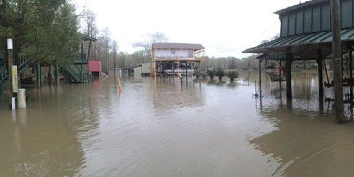 Livingston Parish officials seek damage information from homeowners to submit to FEMA