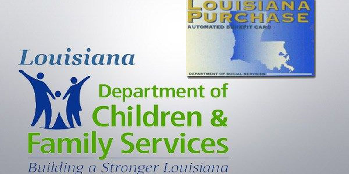 DCFS launches investigation into suspected SNAP fraud