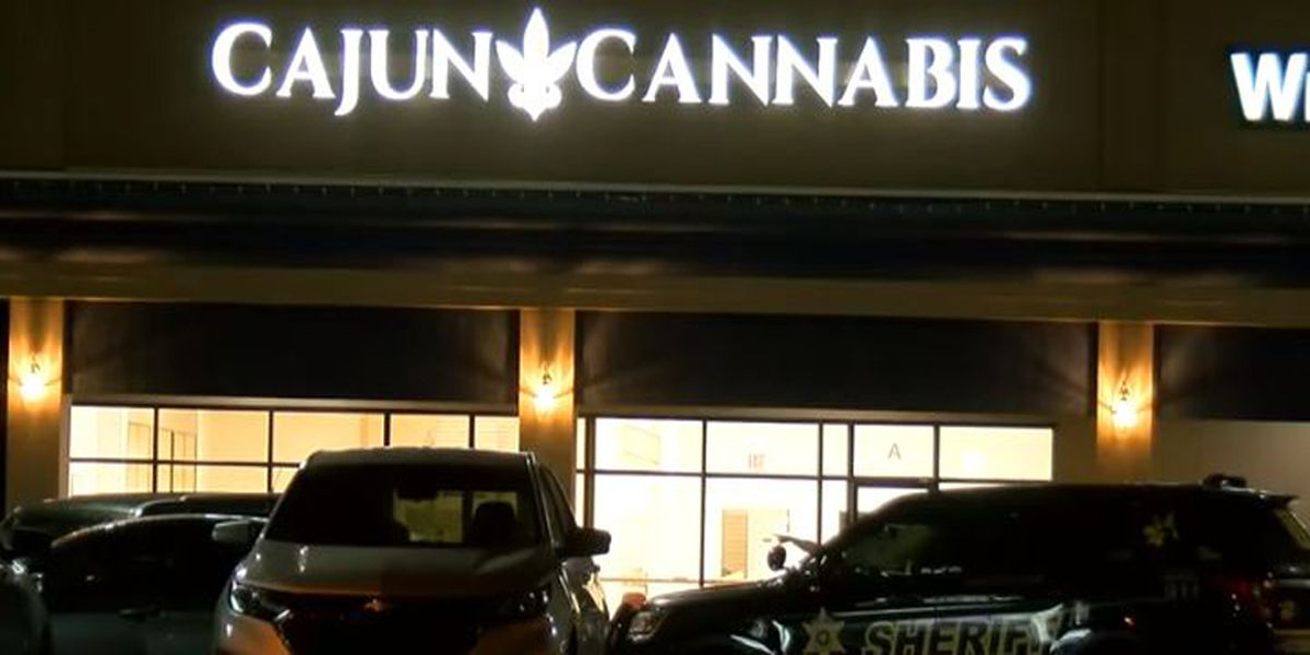Lafayette law enforcement arrests Cajun Cannabis owner after drug raid