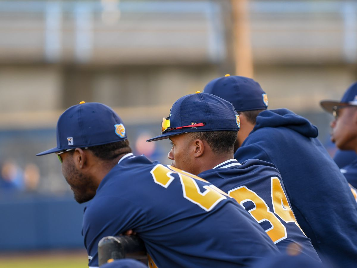 Southern baseball falls to TSU in Game 2