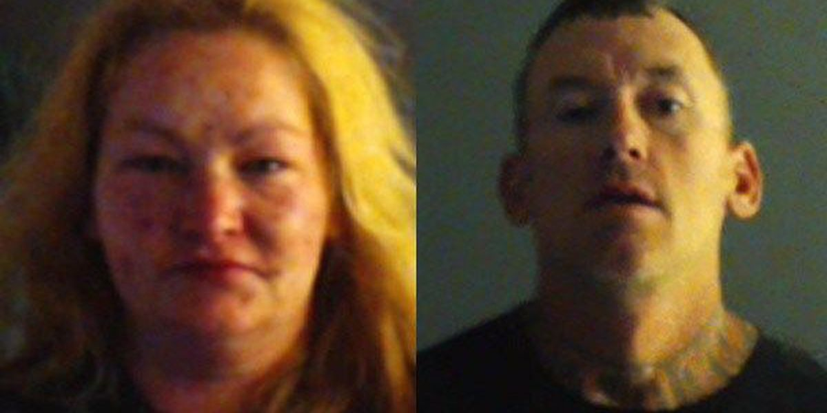 Sheriff: 2 arrested in connection to long-running theft operation