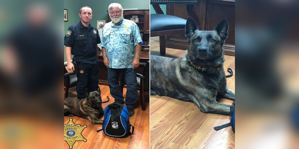 St. Mary Parish Sheriff's Office receives Narcan kit for every K9 unit