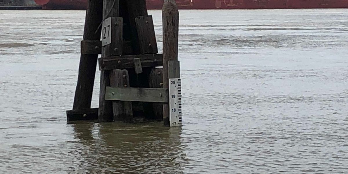 Miss. River expected to rise above 11' at Carrollton gauge; Corps of Engineers activates inspections