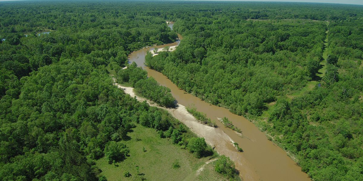 DOTD selects contractor to build bridges for Comite Diversion Canal project