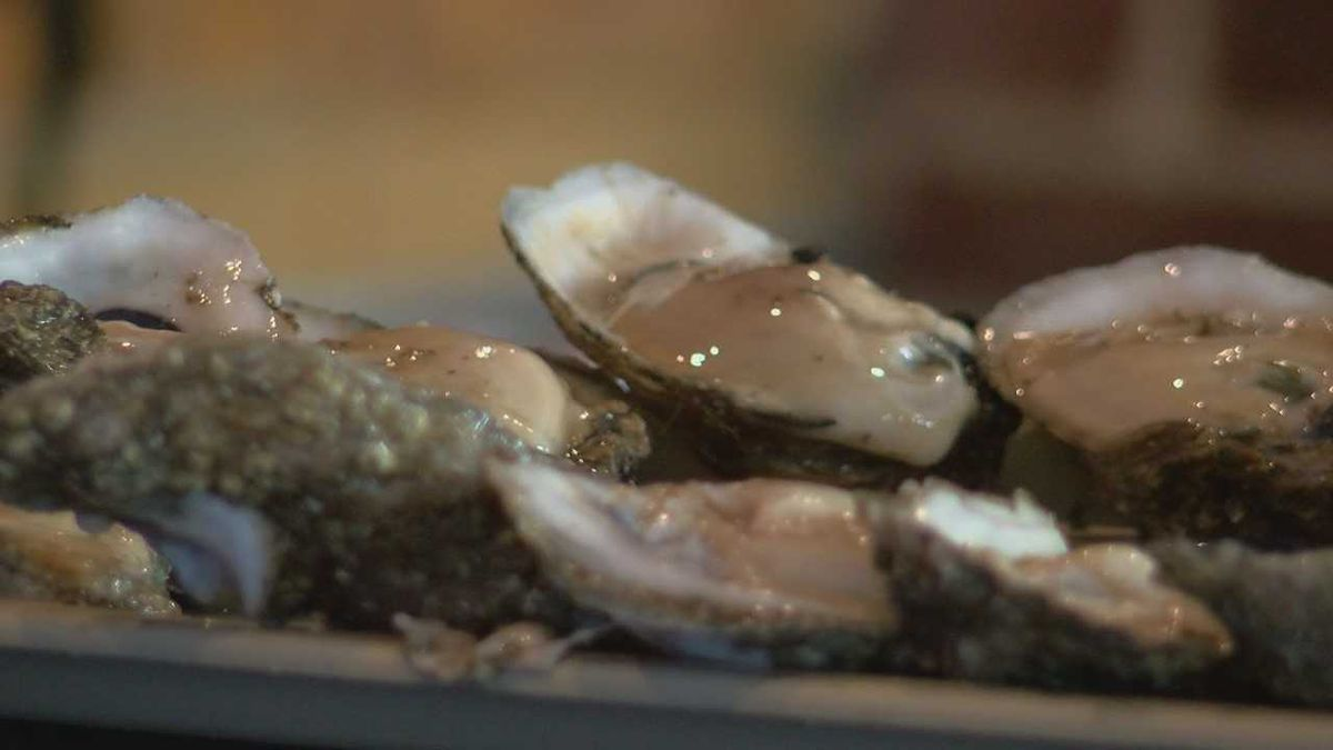 Louisiana seafood industry hurting due to high amounts of fresh water pouring into the Gulf