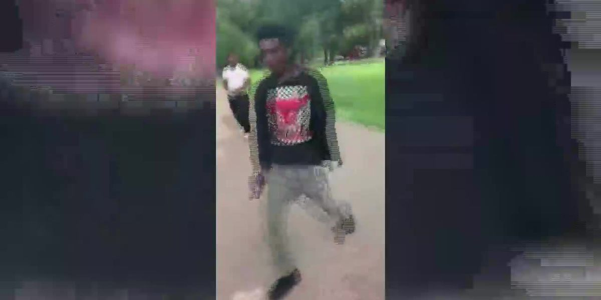 Juvenile accused of shooting into crowd at Hammond park