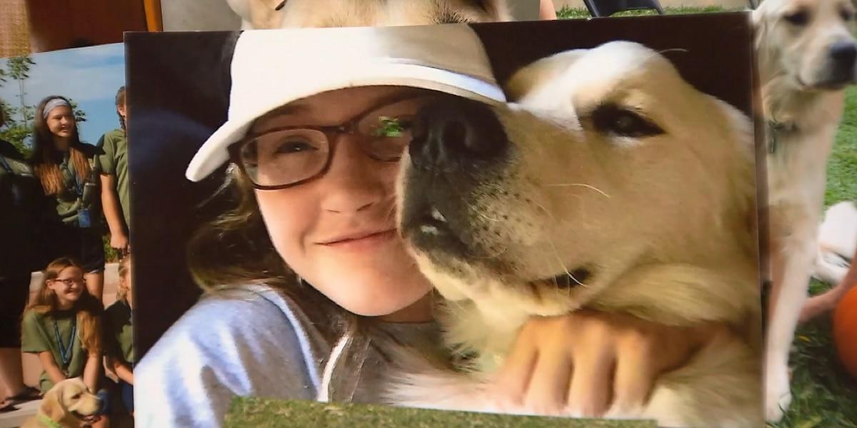 'He was my best friend': Teen's service dog shot, killed outside home