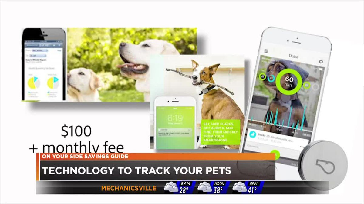 Image result for New technology makes finding missing pets easier
