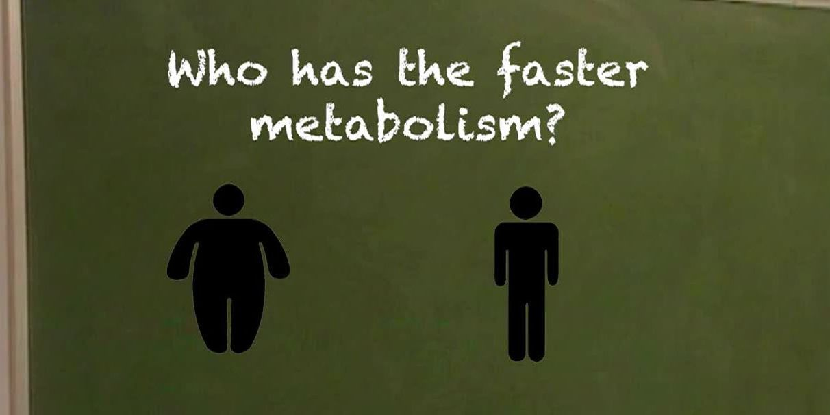 Do thin people have faster metabolisms than big people? No