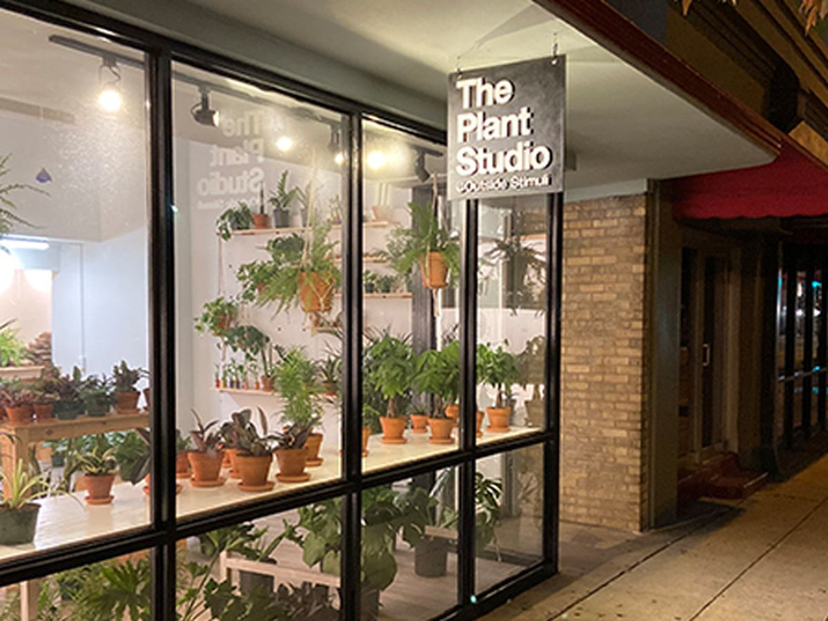 Plant studio opens in downtown Baton Rouge