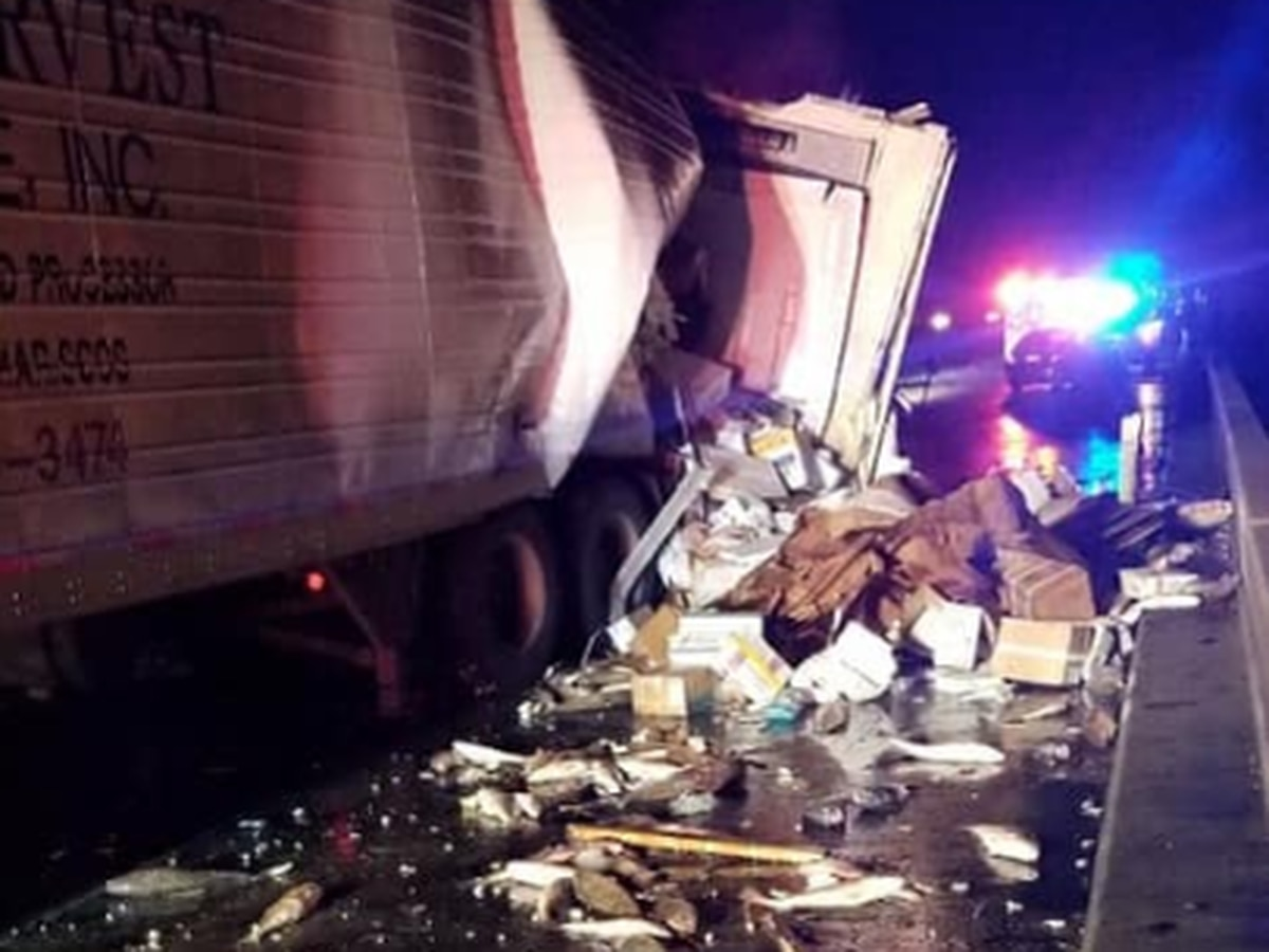 FISH SPILL: I-10 reopens after truck spills frozen fish on roadway