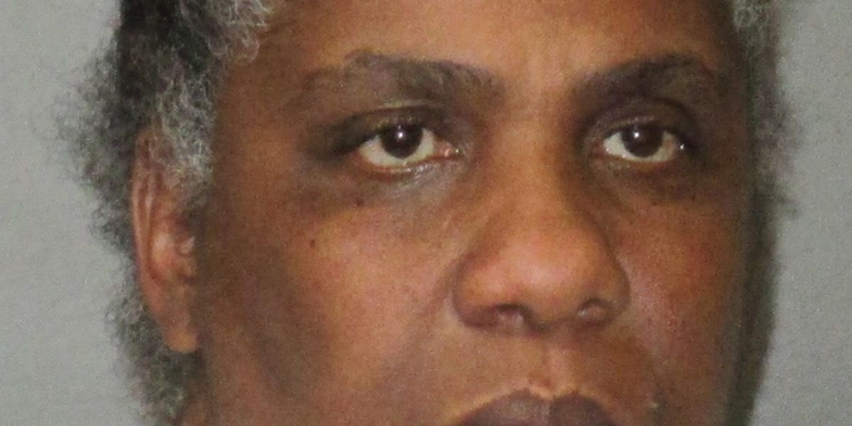 New Roads woman arrested on a dozen charges including arson with intent to defraud