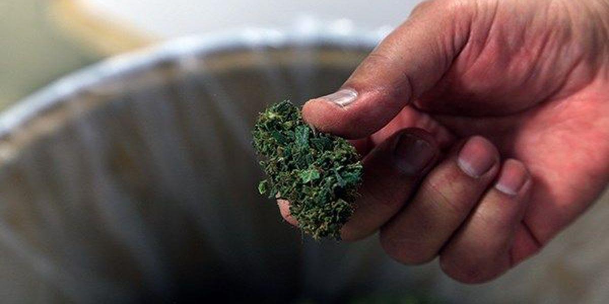 Southern University moves closer to choosing cultivator for medical marijuana program